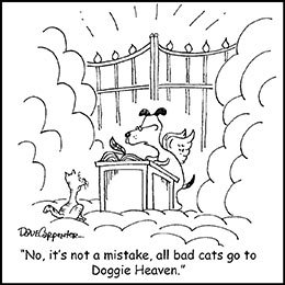 Church art cartoon of cat looking at angel dog behind podium outside gates of heaven with caption NO IT'S NOT A MISTAKE ALL BAD CATS GO TO DOGGIE HEAVEN