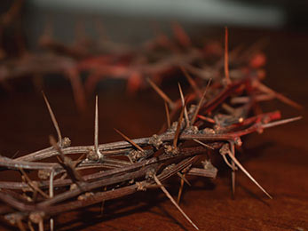 Church art photo of crown of thorns without caption