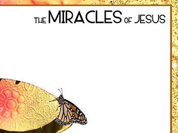 Church Art PowerPoint image of butterfly on leaf and border and caption The Miracles of Jesus
