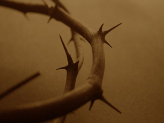 Christian Easter Graphic Photo of Crown of Thorns