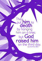 Easter Bulletin Cover with Purple Crown of Thorns God Raised him on the third day Acts 10 caption