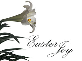 Easter Religious photo of white lily with Easter Joy caption
