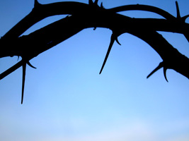 Easter Religious Photo of Crown of Thorns with Blue Sky Background