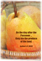 Passover Clip-Art of fruit representing the produce of the land was eaten on the day after Passover with Joshua 5:11 scripture reference