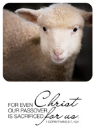 Passover Clip-Art image of a lamb referencing 1 Corinthians 5:7 For Even Christ our Passover is sacrificed for us caption