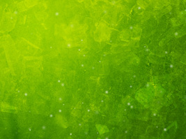 Vibrant Green Worship Background for music lyrics, church announcements and more